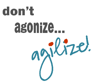 Don't Agonize, Agilize!
